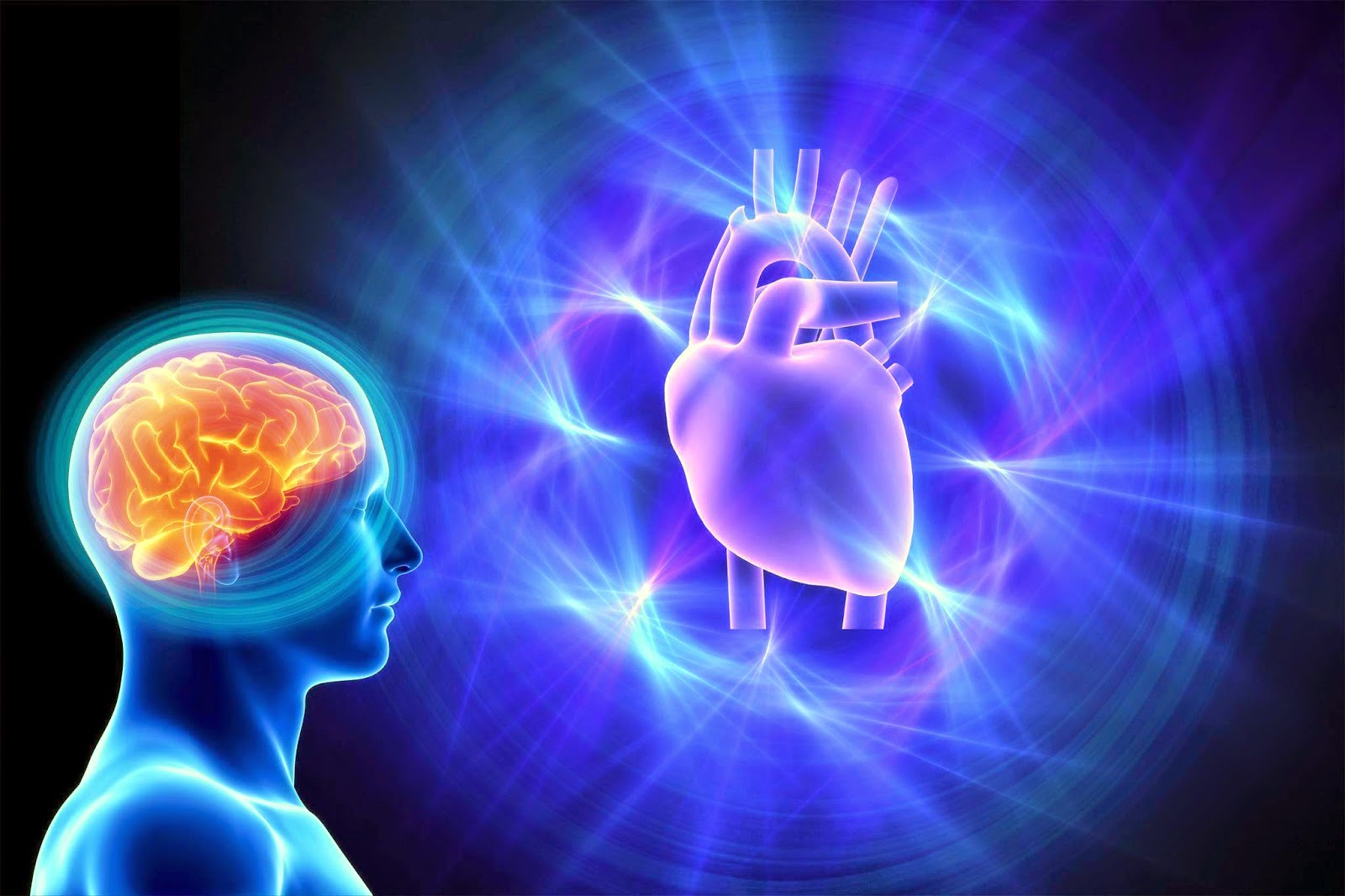 You are currently viewing Heart-Brain Coherence: Let Your Heart Talk to Your Brain