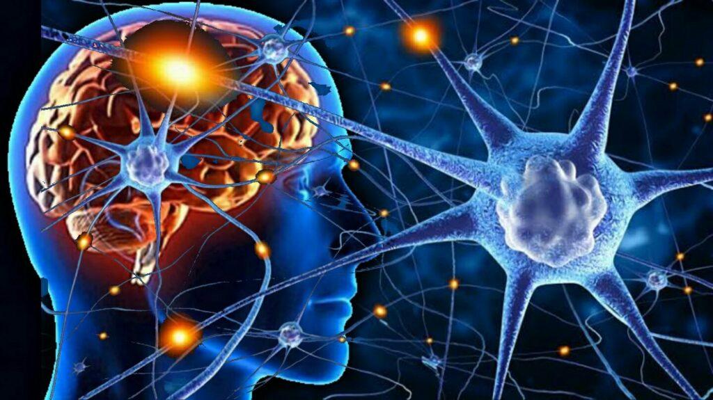 Neuroplastic Brain Neuron Harness the power