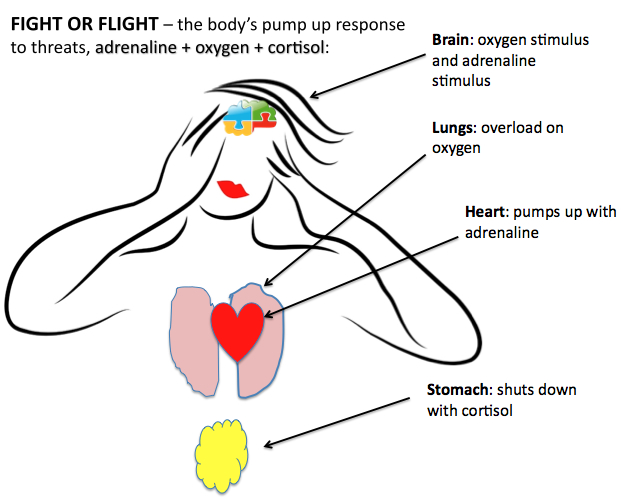neuroplastic Fight or Flight