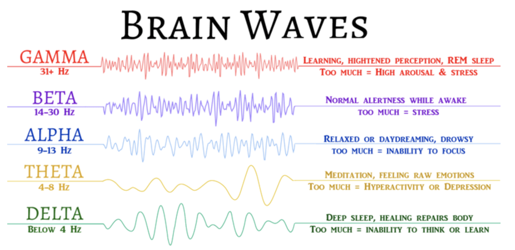 Brain Waves High Beta