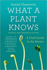 what a plant knows chamovitz