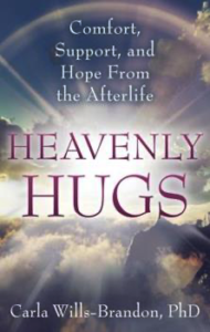 heavenly hugs willis-brandon