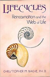 life cycles of reincarnation