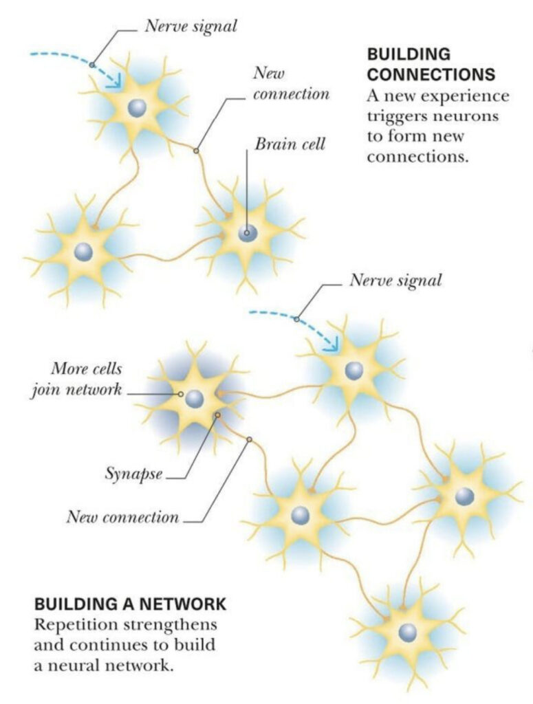 building new neural pathways