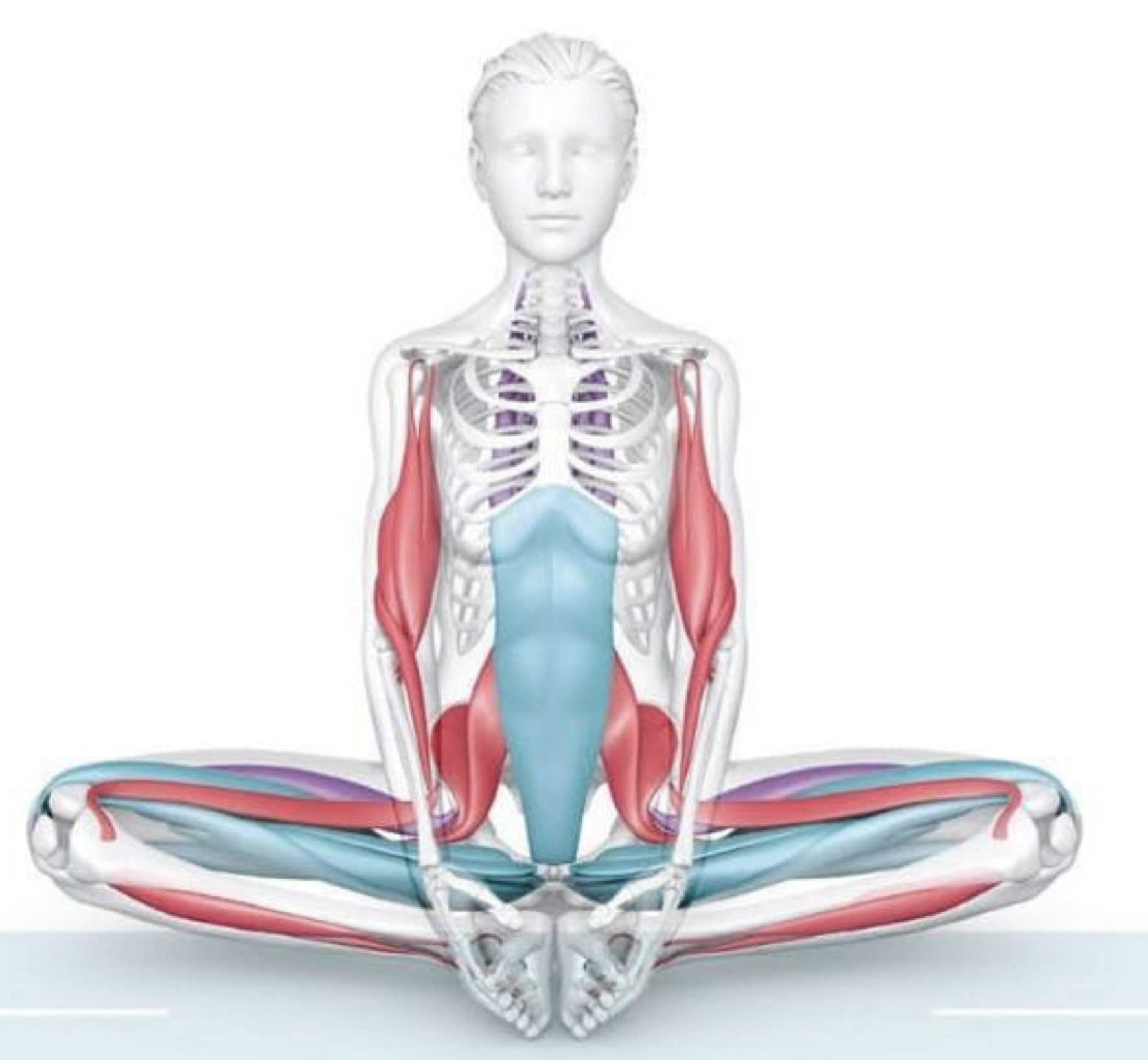 You are currently viewing Yoga Can Enhance Your Brain (Part 1  of 3) The Science of Yoga)